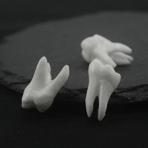 Human Tooth Necklace Meaning