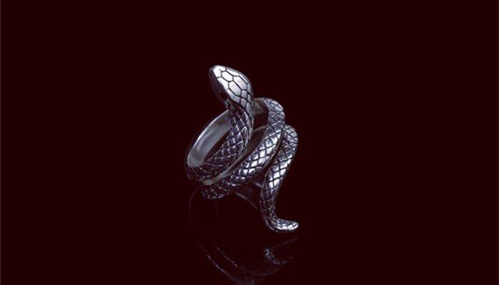 Snake Rings Meaning