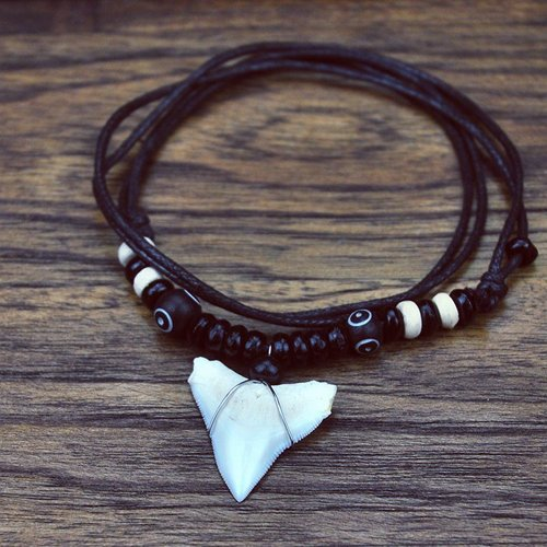 How Do They Get Shark Teeth For Necklaces